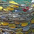 Fish Net Hdr by Cathy Mahnke