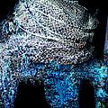Fish Net Santorini Island Greece  by Colette V Hera  Guggenheim