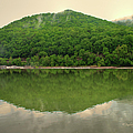 Fish Reflection Where The Kanawha Begins by Paulette B Wright
