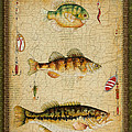Fish Trio-c-green by Jean Plout