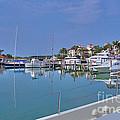Fisher Island Marina Reflections Miami Fl 2  by David Zanzinger