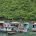 Fisherman Floatting Houses by Sami Sarkis