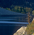 Fisherman On Lundy Lake Eastern Sierras California by Dave Welling