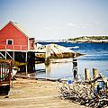 Fisherman's Cove by Sara Frank