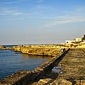 Fishing - Alexandria Egypt by Mary Machare