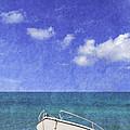 Fishing Boat Algarve Portugal by Amanda Elwell