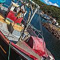 Fishing Boat In Petty Harbour by Perla Copernik