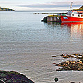 Fishing Boat Intwillingate Harbour-nl by Ruth Hager