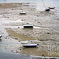 Fishing Boats At Low Tide by Olivier Le Queinec