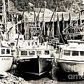 Fishing Boats In Alma by Cheryl Baxter