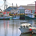 Fishing Boats In Branch-nl by Ruth Hager
