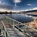 Fishing Dock by Cat Connor