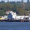 Fishing Docks On Puget Sound by Tom Janca