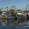 Fishing Fleet by Bob Phillips