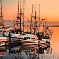 Fishing Fleet Sunset Boat Reflection At Fishermans Wharf Morro Bay California by Jerry Cowart