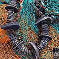 Fishing Gear by Joe Cashin