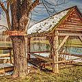 Fishing Hole by Bobby  Hicks