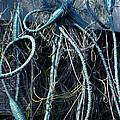 Fishing Net Play   by Colette V Hera  Guggenheim
