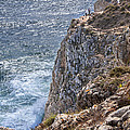Fishing On The Cliffs by Alida Thorpe
