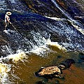Fishing On The South Fork River by Tara Potts