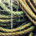 Fishing Rope Textures by Mikel Martinez de Osaba