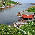 Fishing Stage Little Fogo Island Newfoundland by Lisa Phillips
