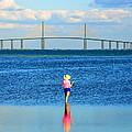 Fishing Tampa Bay by David Lee Thompson