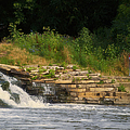 Fishing The Spillway by Thomas Woolworth
