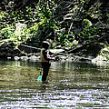 Fishing The Wissahickon by Bill Cannon