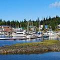 Fishing Village Alaska by Richard Jenkins