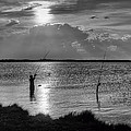 Fishing With Dad - Black And White - Merritt Island by Nikolyn McDonald