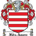 Fitzawry Coat Of Arms Irish by Heraldry