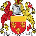Fitzhenry Coat Of Arms Irish by Heraldry