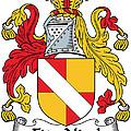 Fitznicol Coat Of Arms Irish by Heraldry