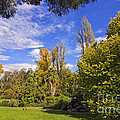 Fitzroy Gardens In East Melbourne Australia by Beverly Claire Kaiya