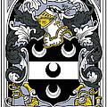 Fitzsimmons Coat Of Arms Irish by Heraldry