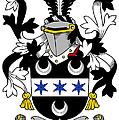 Fitzsimon Coat Of Arms Irish by Heraldry