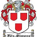 Fitzsimons Coat Of Arms Irish by Heraldry