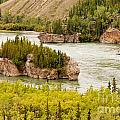 Five Finger Rapids Of Yukon River Yukon T Canada by Stephan Pietzko
