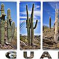 Five Saguaros by Kelley King