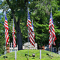 Flag - Illinois Veterans Home - Luther Fine Art by Luther Fine Art