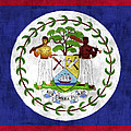 Flag Of Belize by World Art Prints And Designs
