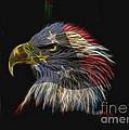 Flag Of Honor by Deborah Benoit