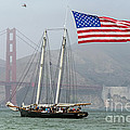 Flag Ship by Kate Brown