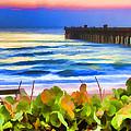Flagler Beach Beautiful by Alice Gipson