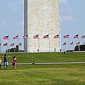 Flags Around Washington by Cora Wandel