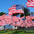 Flags Of Glory by Ed Weidman