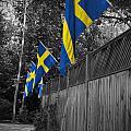 Flags Of Sweden by Jost Houk