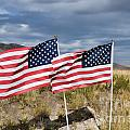 Flags On Antelope Island by Donna Greene