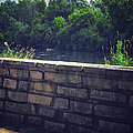 Flagstone Wall by Thomas Woolworth